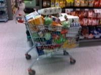 Sultne samlingsdeltagere?