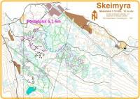 Kart fra Skei