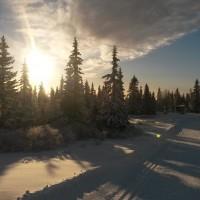 Vinterdrøm på Sjusjøen